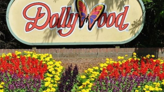 Dollywood Butterfly