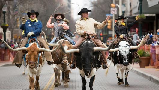 San Antonio Cattle Drive